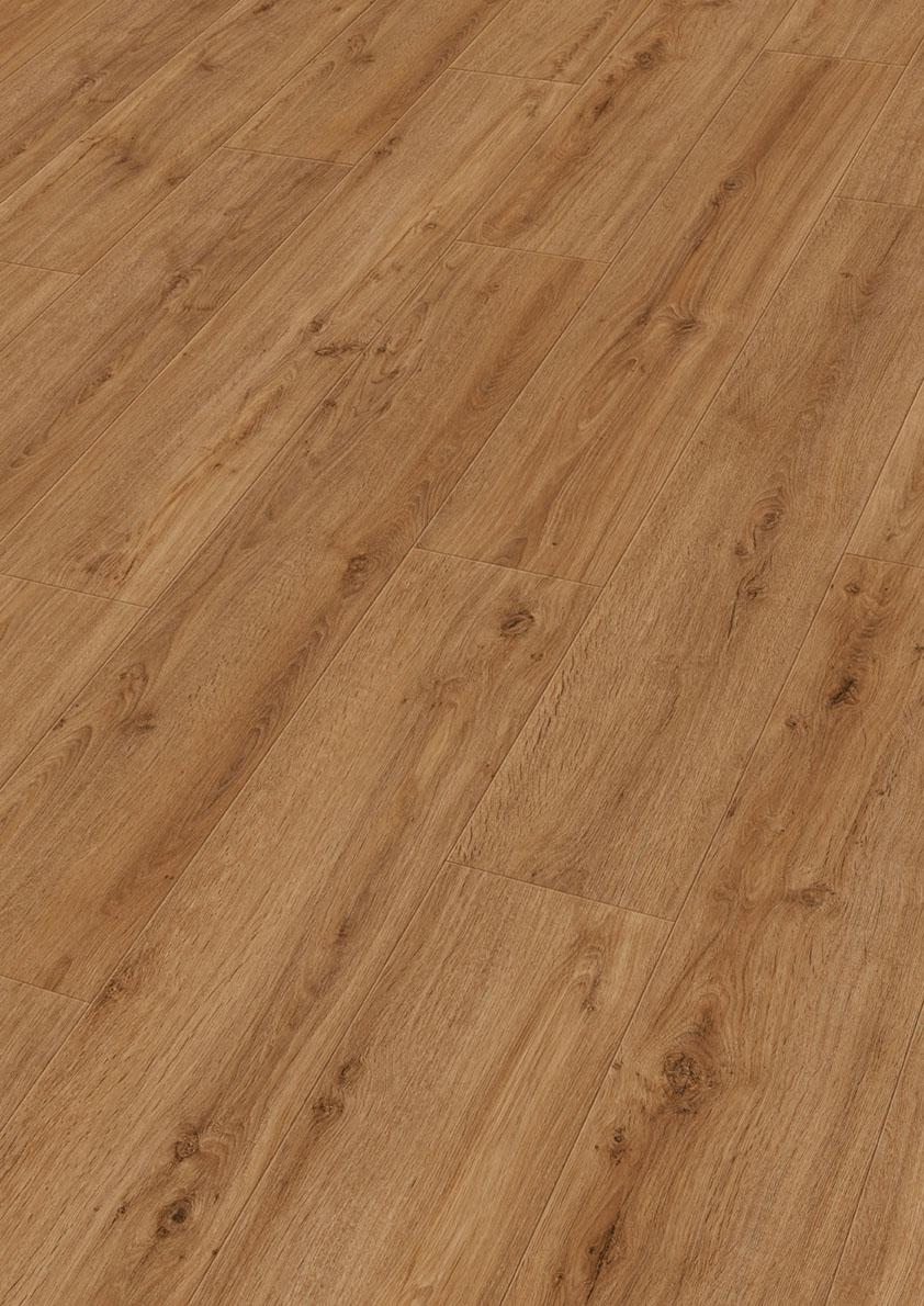 Golden Oak 6999 (DD)